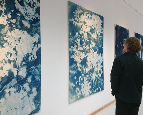 Cyanotypien von Antka Hofmann