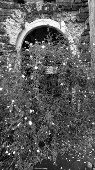 verzauberter Eingang, Schwaz-Weiß Foto