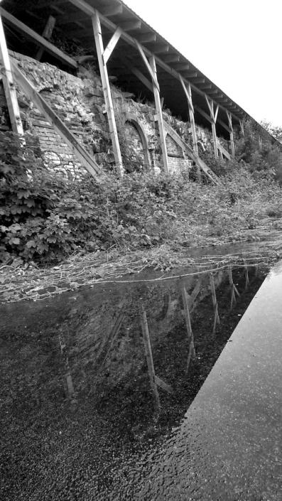 Natur-Bahnsteig, Schwaz-Weiß Foto