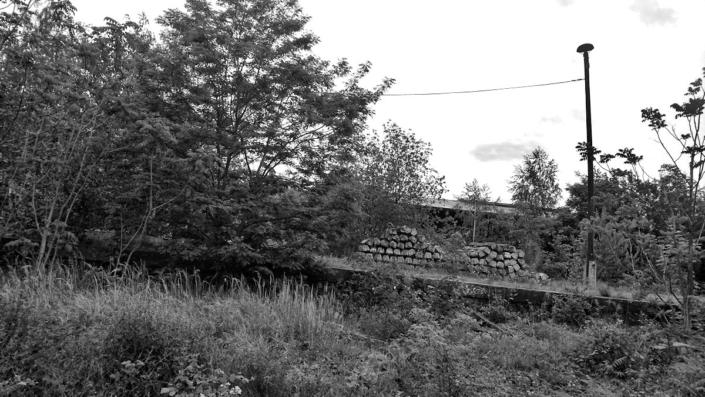Natur-Gleisanlage, Schwaz-Weiß Foto