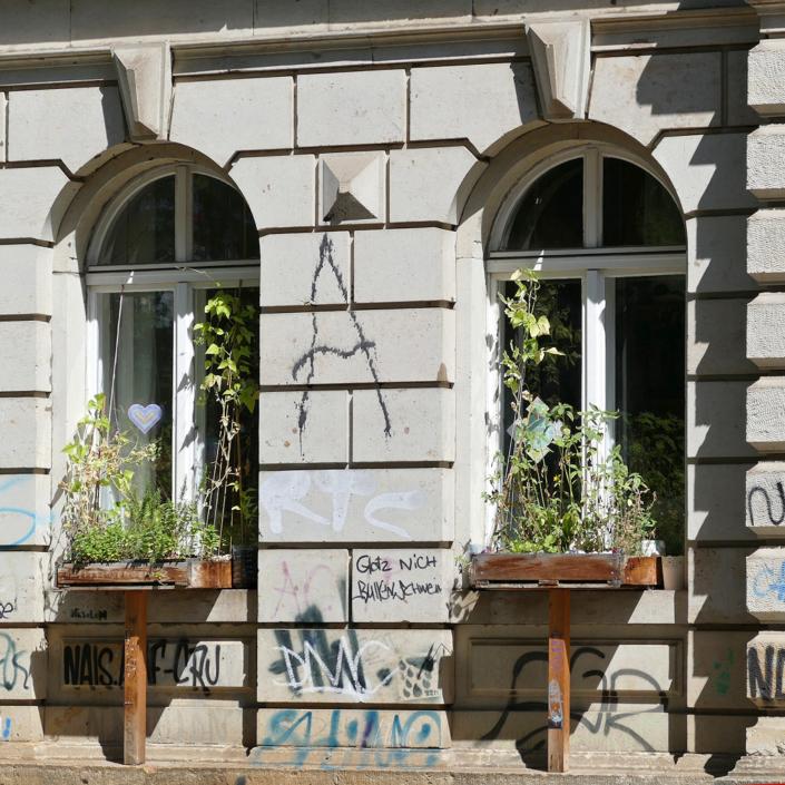 Fenstersimsgarten